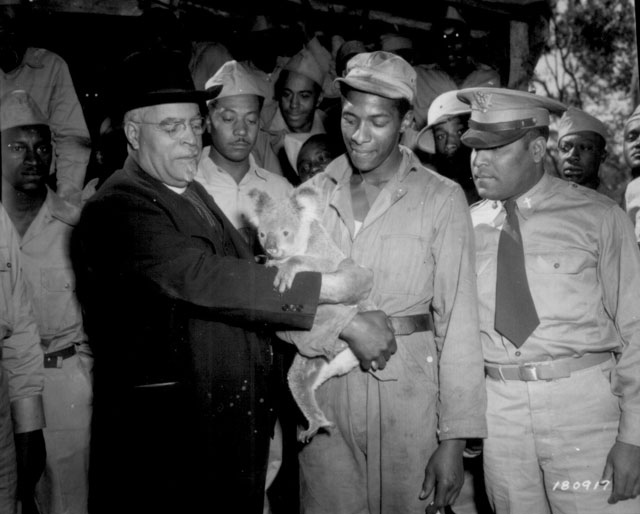 Bishop John Andrew Gregg, Leader of [the] African Methodist Church in North Central United States and Envoy of President Roosevelt, fondles a pet koala bear adopted by Pfc. Sammy Hurt. Around the Bishop are members of the [630th] Ordnance Company. July 21, 1943. 111-SC-180917.